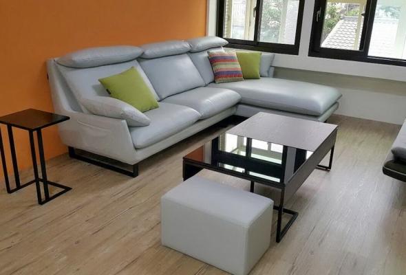 歐萊雅-皮沙發